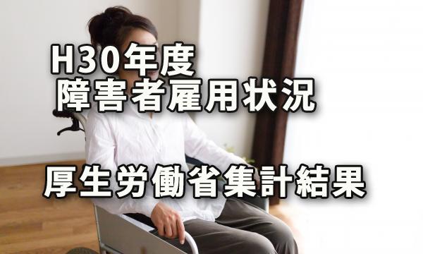 平成30年度 民間企業障害者雇用状況~厚生労働省集計結果